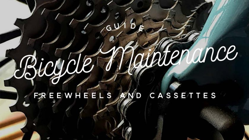 Bike Maintenance Freewheels/Cassettes