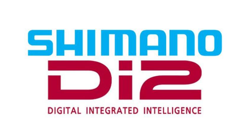 Shimano Di2 Service